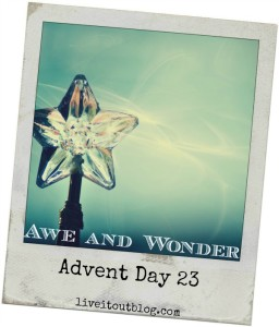 Day 23 Awe and Wonder